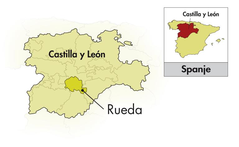 Castelo de Medina Rueda Fermentado en Barrica Verdejo
